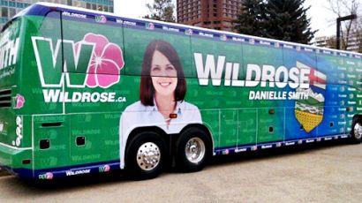 3914_wild-rose-bus-design-1058820-flash