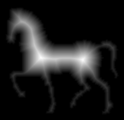 horse_distance_transform