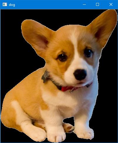 dog_opencv